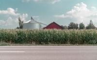 Riscos em agronegócio